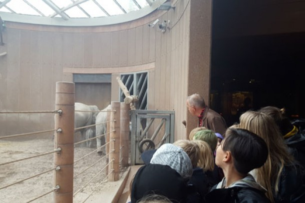 6a i Zoo