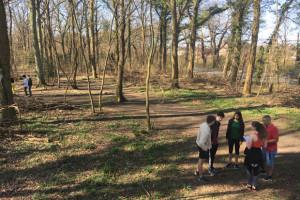 Orienteringsløb i skoven