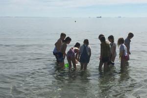 Big Beach Day!