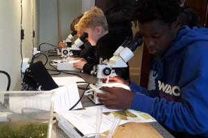 Fagdag i biologi