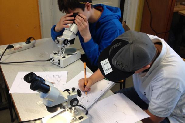 Hverdagsbilleder fra Science Class